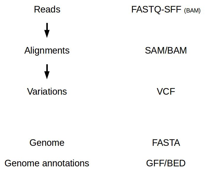 NGS file formats — Bioinformatics at COMAV 0 1 documentation