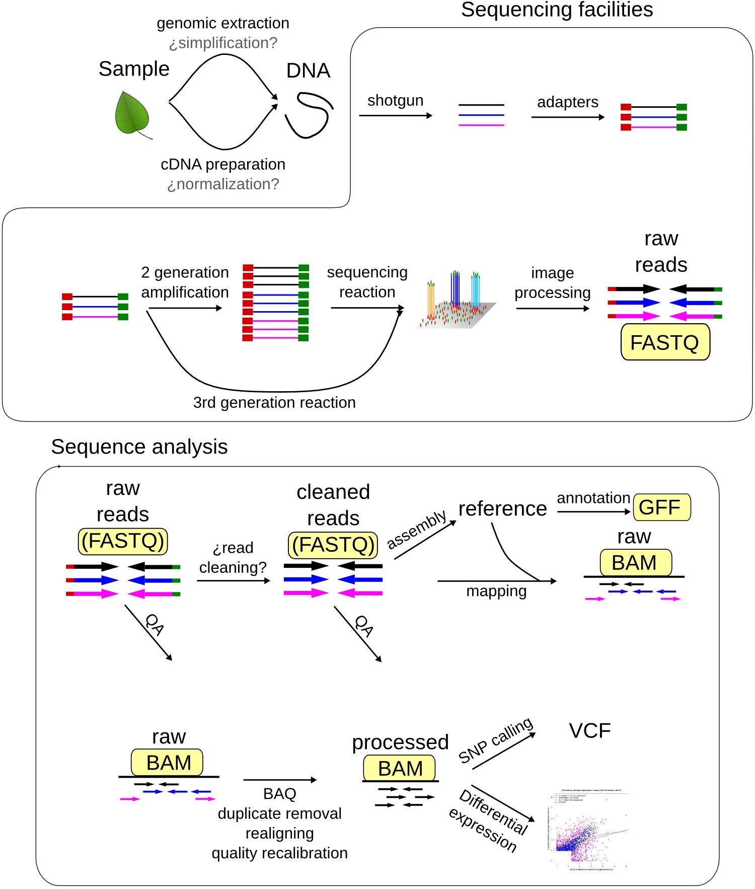 Ngs File Formats Bioinformatics At Comav 0 1 Documentation